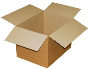 Living in a Card Board Box
