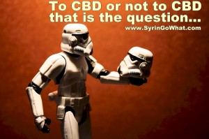 Syringomyelia, To CBD or Not To CBD