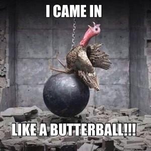 Syringomyelia, Thanksgiving Butterball - SyrinGoWhat.com